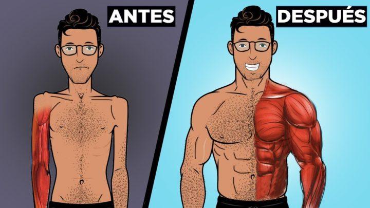 La pregunta de hoy: ¿Cómo ganar músculo?